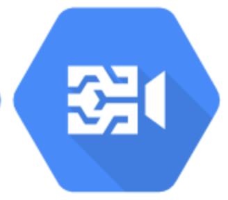 Video Intelligenge API .png